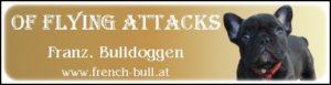 bullys-of-flying-attack-300x77 Links