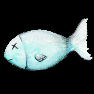 Fisch_transparenter-Hintergrund_Aram-und-Abra-300x300 Leckerlis