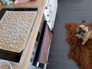 20200331_123341_resized-300x225 Lachs-Kokos-Kekse für Hunde
